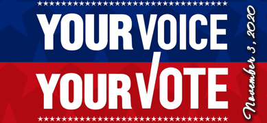 Your Voice is Your Vote, Nov 2020 General Election
