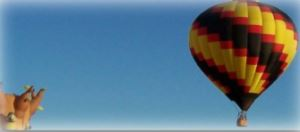 A hot air balloon floating in the sky